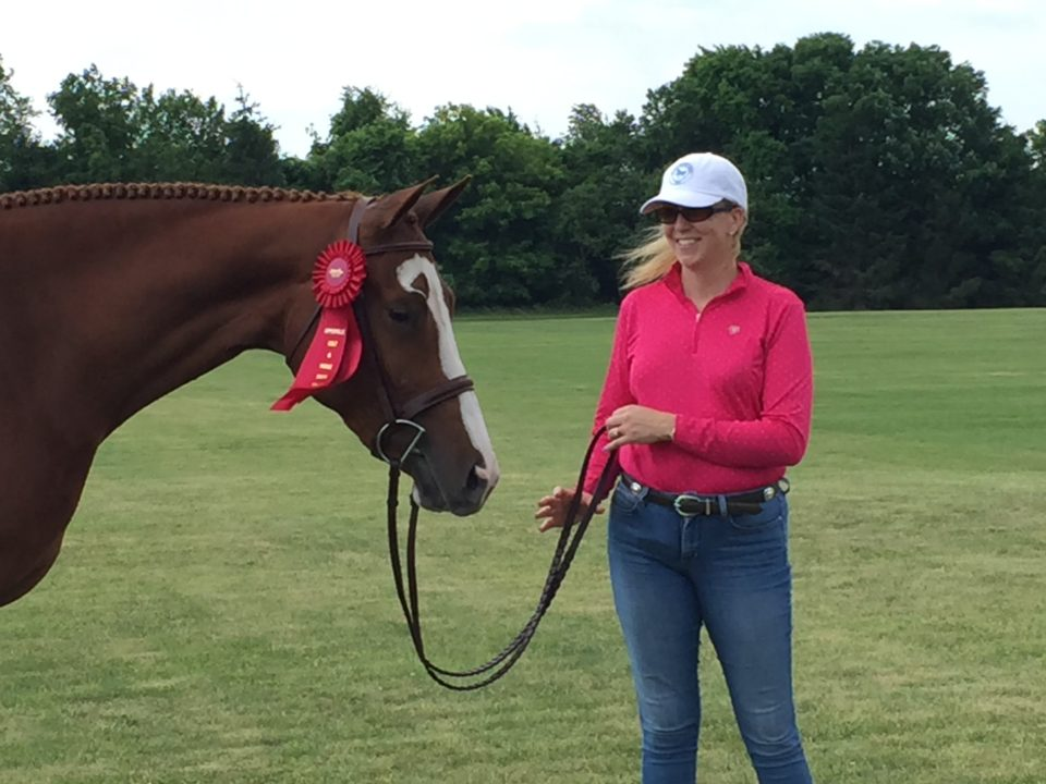 Brown Horse with Rachelle after competition- Equine Simplified